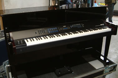 Editors piano shell gloss black